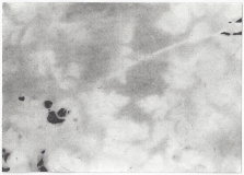 'fragment 35' / charcoal drawing on paper / 14,8 cm x 21 cm / 2017